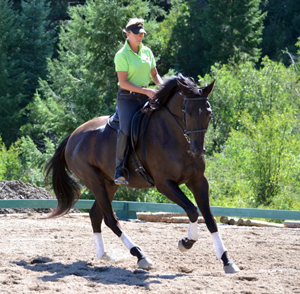 Linda Parelli dressage riding