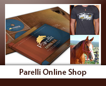 2012 Parelli Horse Training courses now available!